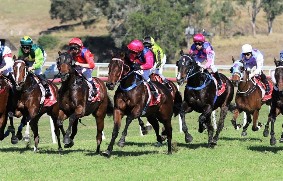 KILCOY RACES - 11 MARCH 19